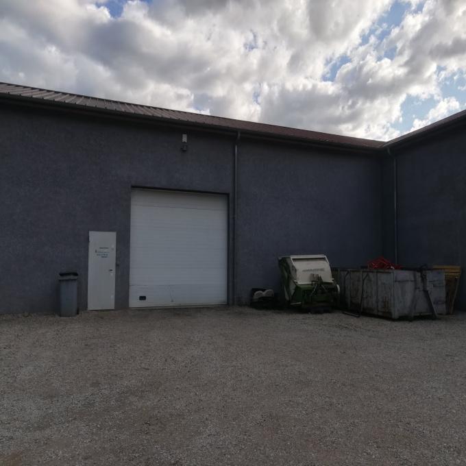 Location Immobilier Professionnel Entrepôt Saint-Michel-sur-Rhône (42410)